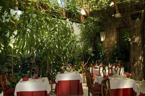 Giardino D Inverno Giapponese : Ristorante papadopoli giardino d inverno venezia