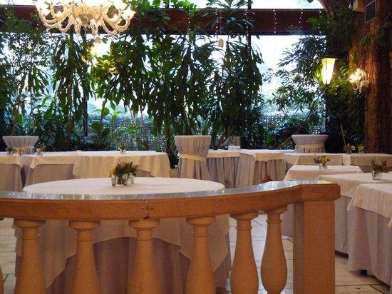 Giardino D Inverno Veneto : Ristorante papadopoli giardino d inverno venezia